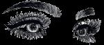 Lcrox Co Ltd